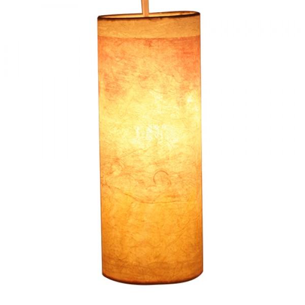 Paper mache lamp shade m aloadofball Gallery
